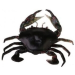 Savage Gear 3D Manic Crab 2,5cm Black Crab 5szt.